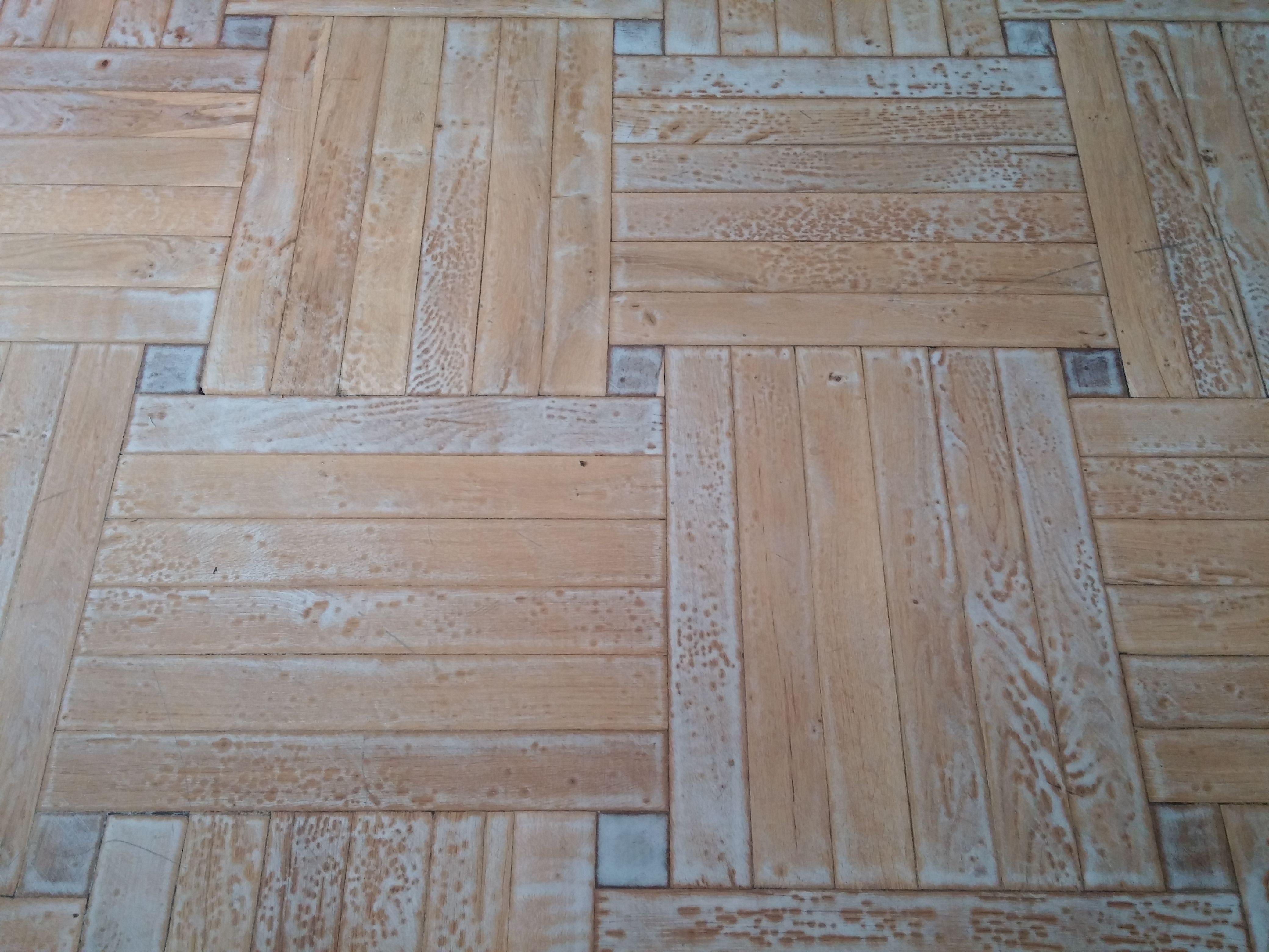El barniz de parquet o tarima se pone blanco veladura - Como pintar las juntas del piso ...